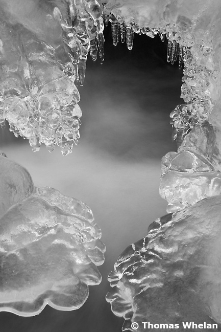 img_1168_2ices