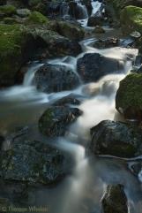 Morning cascade