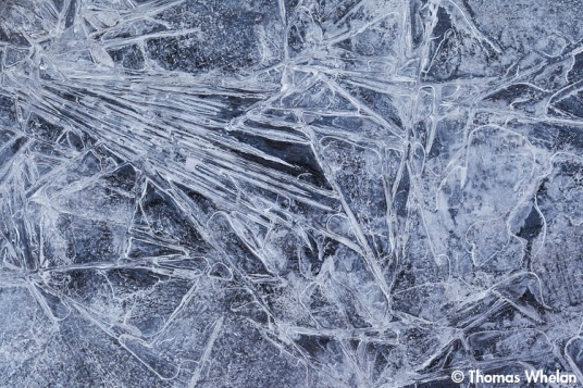 _MG_4734-2-ice